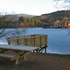 Lac des sapins à Cublize photo #226