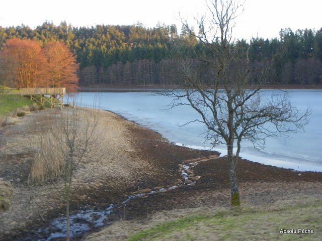 Lac des sapins à Cublize photo #228