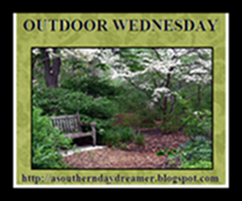 OutdoorWednesdaylogo54544444