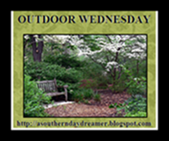 OutdoorWednesdaylogo5544445444