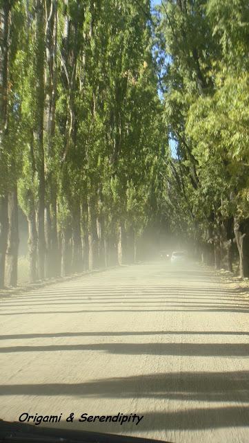 Ruta del Vino, Mendoza, Argentina, Elisa N, Blog de Viajes, Lifestyle, Travel