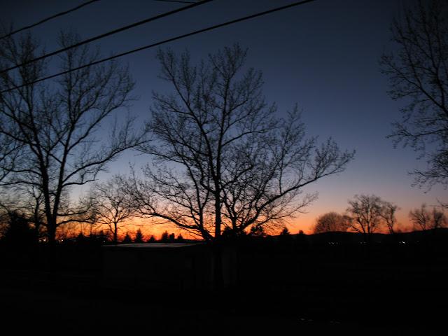 Sunset over the Alien Lesbian Cow Park