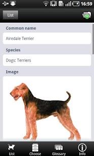 Picking your Pet- screenshot thumbnail