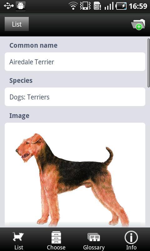 Picking your Pet- screenshot