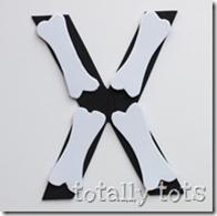 x ray craft