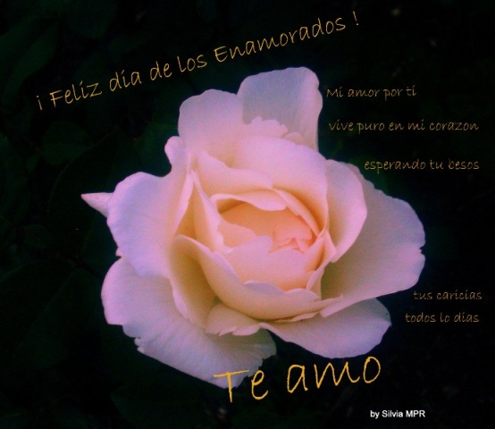 Frase Dia De Los Enamorados 2 Quotes Links