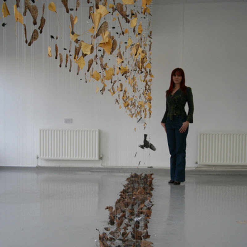 Claire Morgan is a visual artist working primarily in the area of ecological sculpture