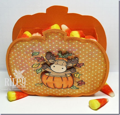 Riley-Pumpkin-Box2-wm