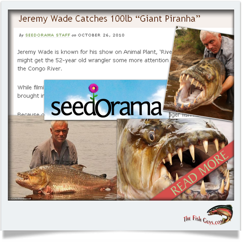 "Jeremy Wade Catches 100lb ""Giant Piranha"""