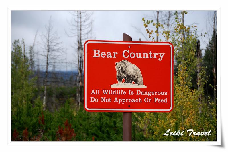 美國冰河公園,小心熊出沒