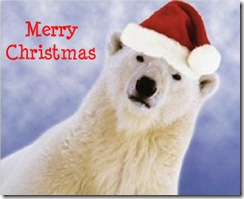 polar_bear_christmas