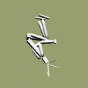 bhs2 (backhandsprings 2) icon