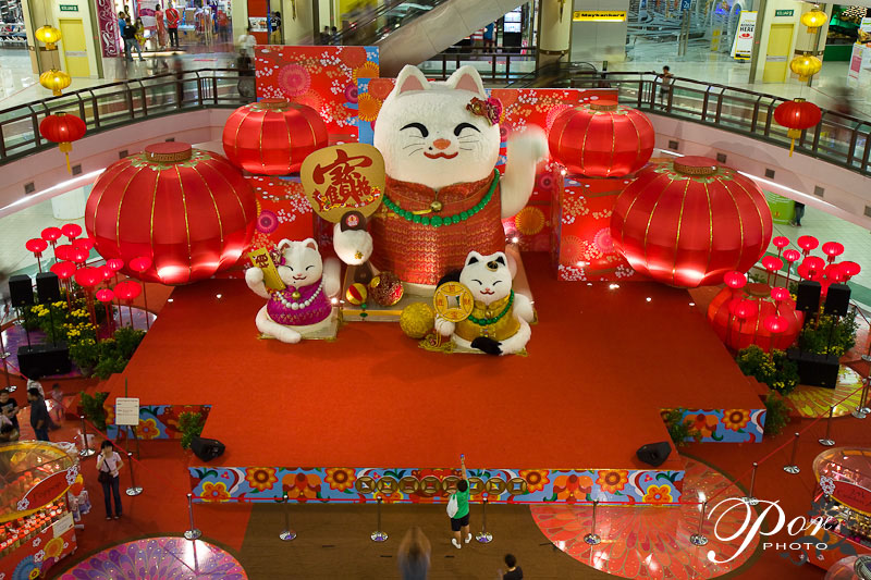 like a tiger here except the chinese character of the u201cTiger & Chinese New Year Decoration Ideas Photograph | ... like a ti