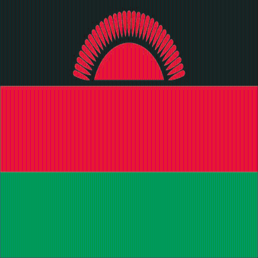 Malawi Facts LOGO-APP點子