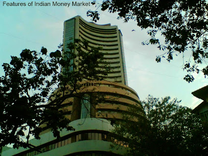 features characteristics indian money market
