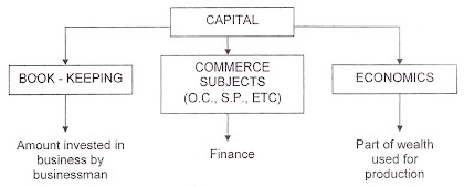 meaning of capital