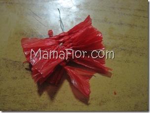 mamaflor-5495