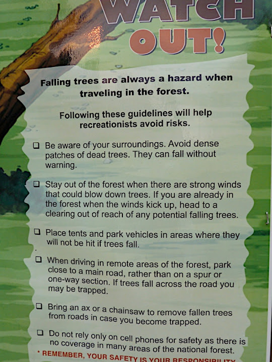 Trees Warning