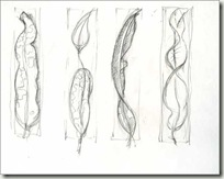 leaf sketch sm 1