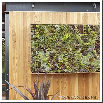 succulent-art-l flora grubbs