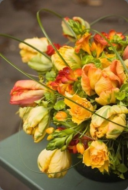 yellow-and-orange-tulips-roses-freesia-Françoise-Weeks