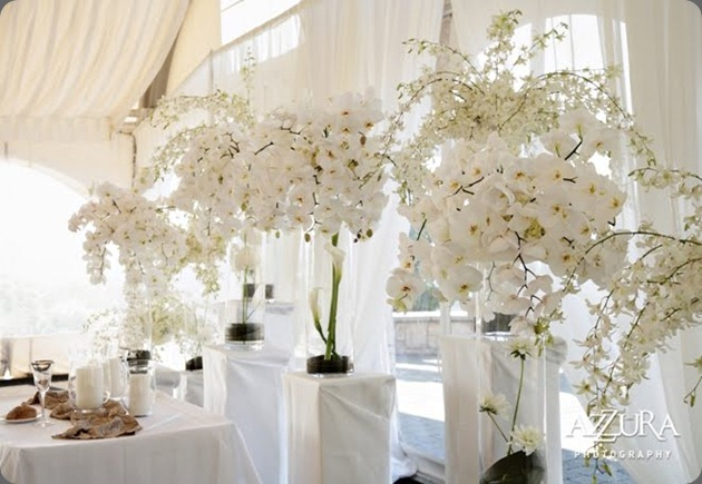 white-phalaenopsis-orchids-wedding-flowers  flora nova seattle