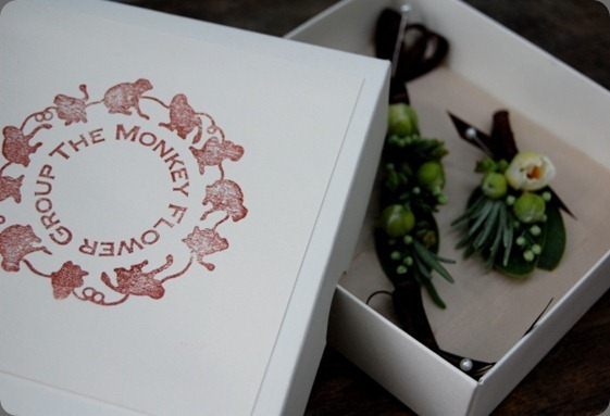 MFGBoxTop-the-monkey-flower-group_th