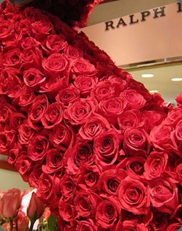 IMG_0064 2000 hot lady roses little pheasant