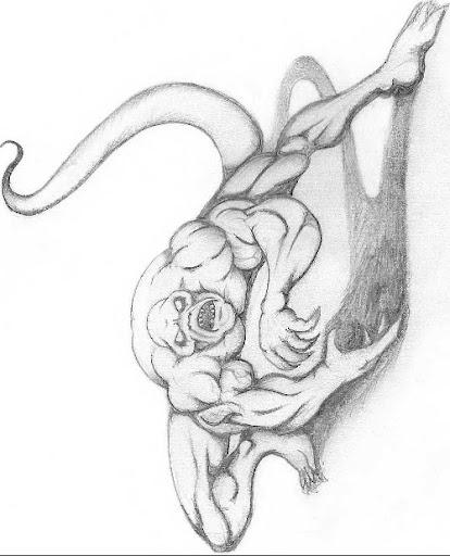 marley tattoo tattoos gallery by stephanie hawkins