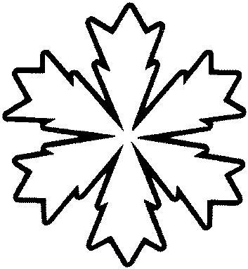 Copo De Nieve El Icono Del Invierno