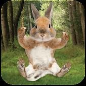 App Tickle Bunny APK for Kindle