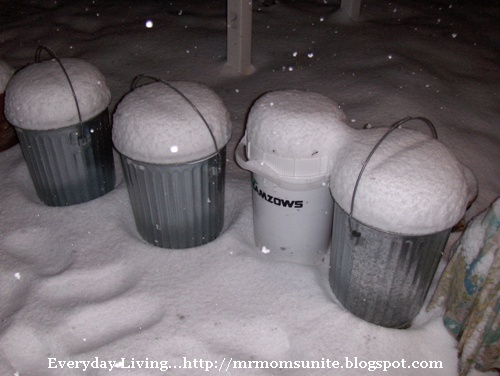 photo of the snow covered trash cans