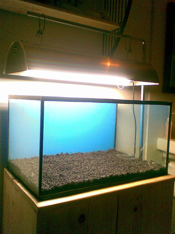 Diy 2ft Light Hood Ada Inspired Aquascaping World Forum