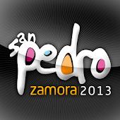 San Pedro Zamora 2013