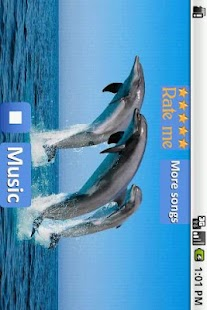 Dolphins - Sound to relax- screenshot thumbnail