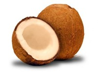 surface-vs-cryptic-coconut
