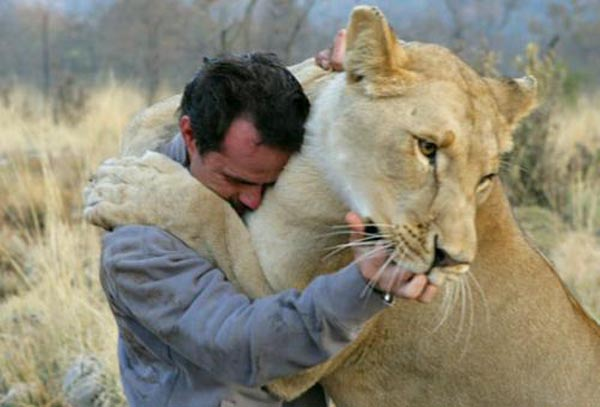 Ranger with a lioness