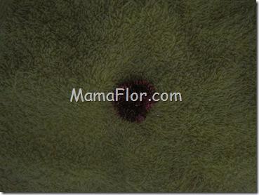 mamaflor-6088