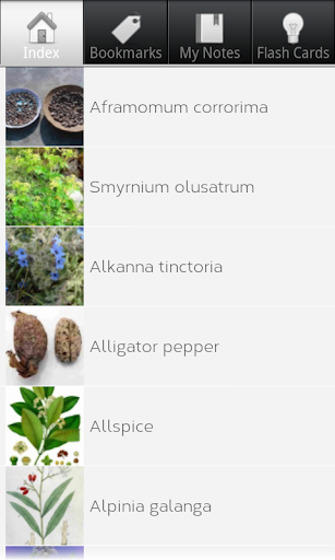 Culinary Herbs for Cooking