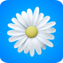 ♥ Daisies / Flowers Free icon