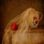 Irina Furashova-1.jpg