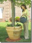 Pot That Tree Garden Com