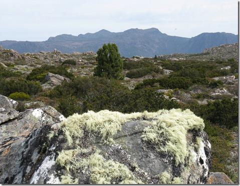 Mawson plateau view to Florentine Peak
