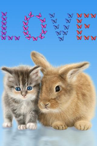 Cat and Bunny. Cute Wallpaper. - screenshot
