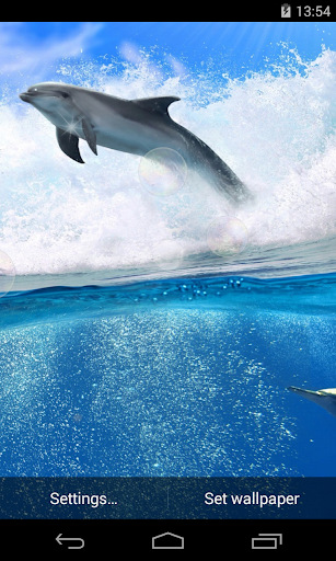 Dolphins Free Live Wallpaper