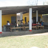 The project building