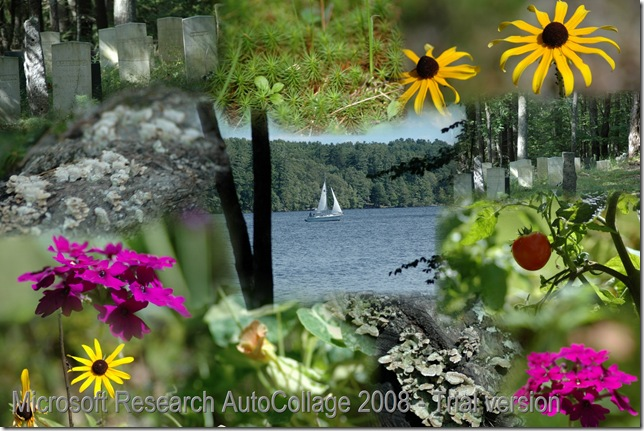 2006 08 13_AutoCollage_12_Images