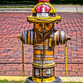 Artistic Fire Hydrant by Stephanie Turner - Artistic Objects Still Life ( painted, stilllife, colorful, colors, still life, art, artistic object, artistic objects )