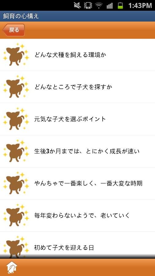 大人気わんこベスト40- screenshot
