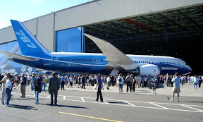 The Boeing 787 or Dreamliner